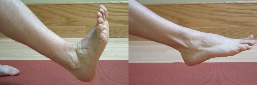 Ankle Sprains Intermediate Phase Part Ii Of Iii The